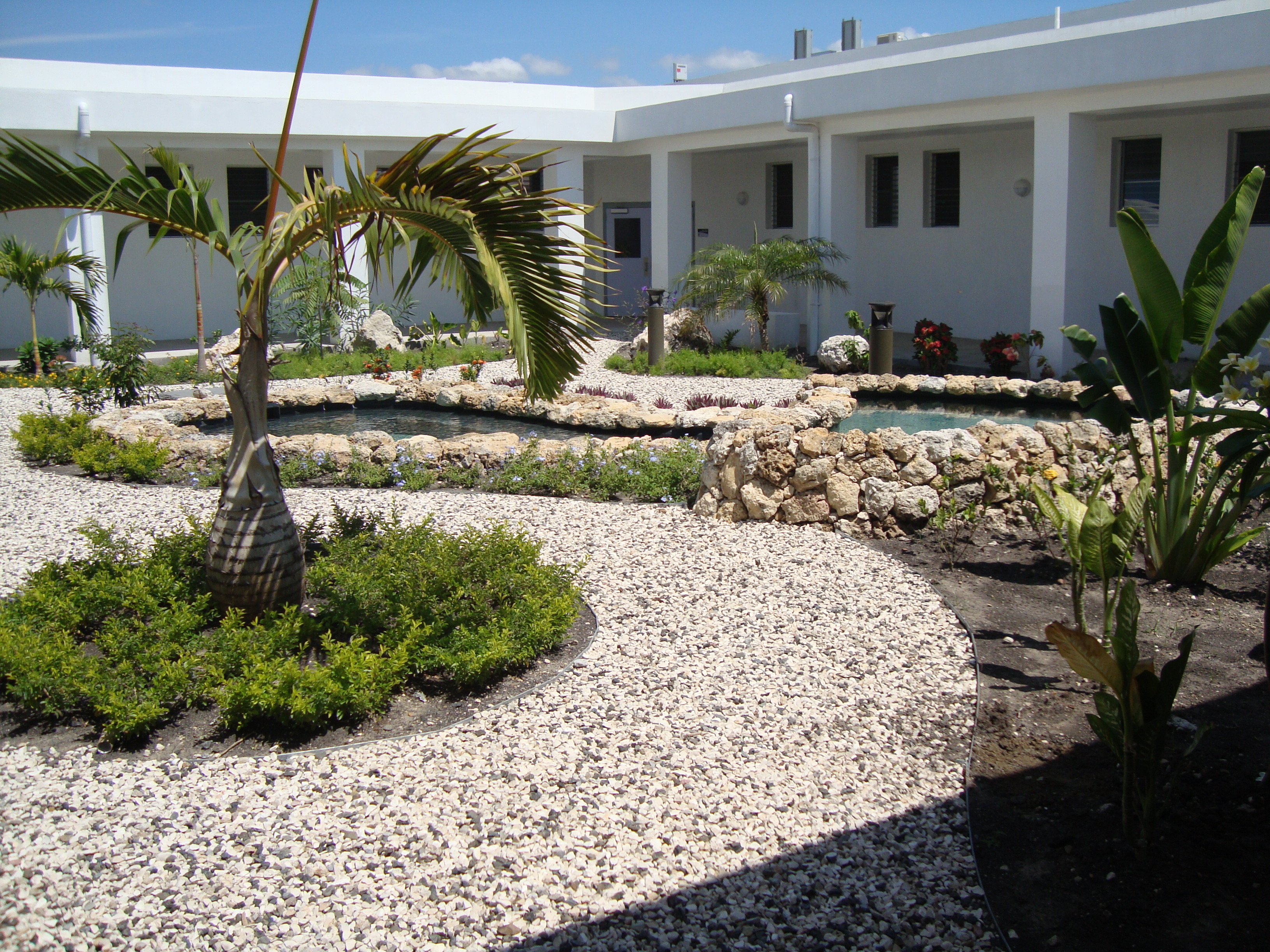 An interior courtyard in the hospital, which provides a healing and restorative area for patients to stroll.
